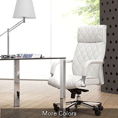 Nice to see a white leather desk chair instead of the black. very chic.