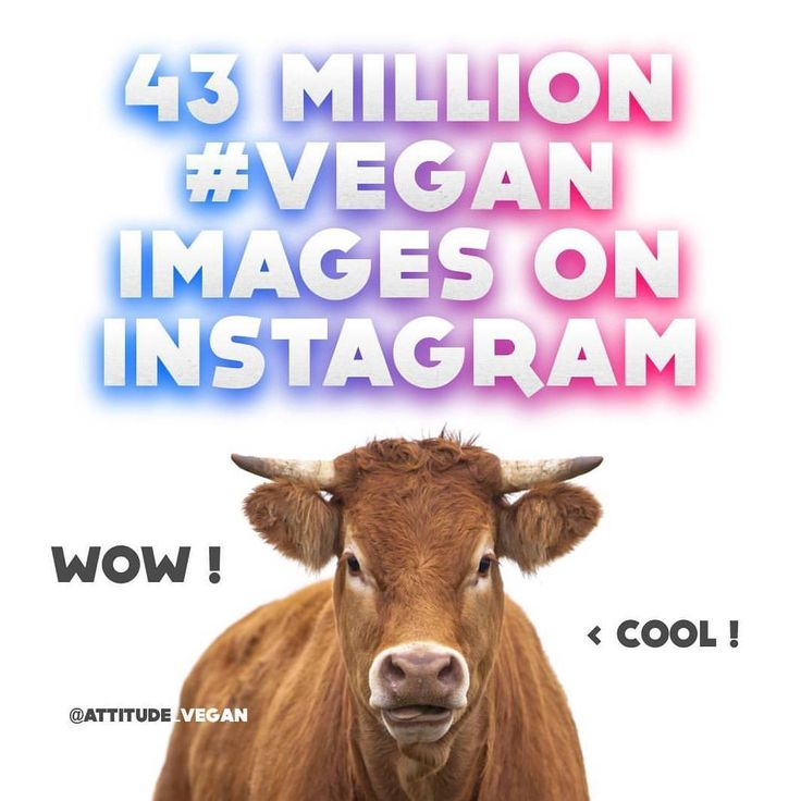 WOW ! Over 43 MILLION images tagged #vegan on Instagram ! It is therefore amongst the top famous hashtags on Instagram. THANK YOU ! The world is waking up ! You can verify it with a search ! . . . #love #food #animal #cute #healthy #sexy #fitness #workout#CrueltyFree #Vegan #Skincare #AustralianMade #ILoveJojoba#govegan#like #Veganfoodlovers #veganfood #veganrecipe #veganrecipes #Vegetarian #VeganFitness #veganrecipe #veganfoodshare #veganfoodlovers #plantbased