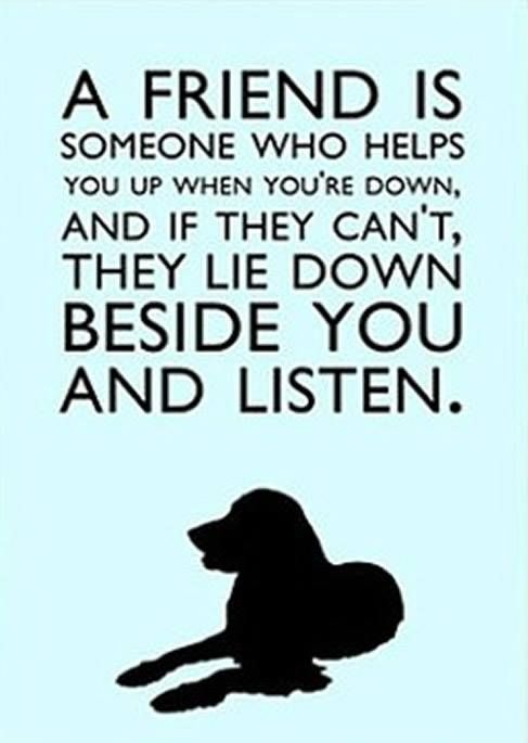 REPIN if you agree dogs are always there for us. ♥ #BIONIC www.bionicplay.com