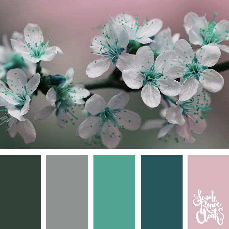 Soft pink, teal and gray color Inspiration | Click for more color combinations and color palettes inspired by the Pantone Fall 2017 Color Trends, plus other coloring inspiration at http://sarahrenaeclark.com | Colour palettes, colour schemes, color therapy, mood board, color hue