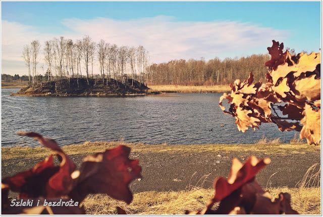 szlaki i bezdroża: Bytom - zimowa Brandka