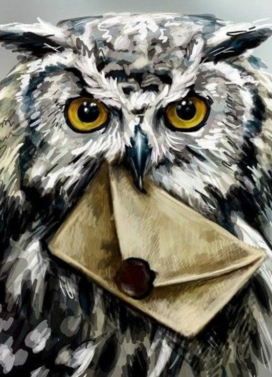 harry potters owl delivering a letter harry potter in
