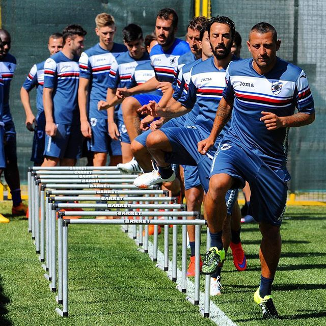 Sampdoria Prospects for 2015 2016 (With images) Soccer