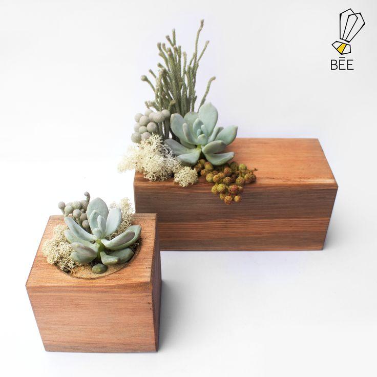 Ahşabın sıcaklığına sukulentin pastel tonlarını ekledik. #beedesignandflowershop #art#design#decoration#jar#interiordesign#indoorgardening#nature#treebowl#plant#asparagus#justice#green#sculpture#flower#concept#handmade#succulent#çiçek#tasarım#bitki#yeşil#aranjman#arrangement#ahşap#wood#woodplanter#wooddesign#saksı#çiçektasarımı