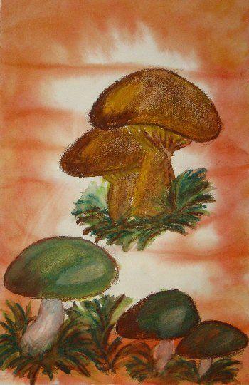 Laveerataan tausta märkää märälle - tekniikalla, jätetään paperin keskiosa vaaleammaksi ja reunoilta laveerataan tummemmaksi. Annetaan työn kuivua. Luonnostellaan sienet kevyesti akvarellivahaväreillä. Sävytetään sienet niiden luontaisilla väreillä, ensin kevyin vedoin ja vähitellen väriä lisäten. Lopuksi käydään vedellä ja siveltimellä läpi akvarellivahaväreillä piirretyt osat ja annetaan työn kuivua.