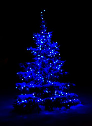 Snow covered tree with blue lights...reminds me of my childhood in Wyoming! :)