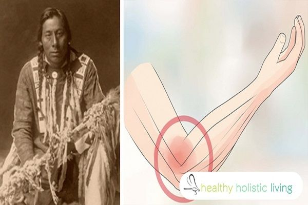 The Cherokee tribe is native to southeastern United States. They have a gift of understanding and learning medicinal plants. According to them, god has given them his own pharmacy. This tribe promotes these plants. They have been taught to use every third plant for medicinal purposes. In this way, there is always enough left […]