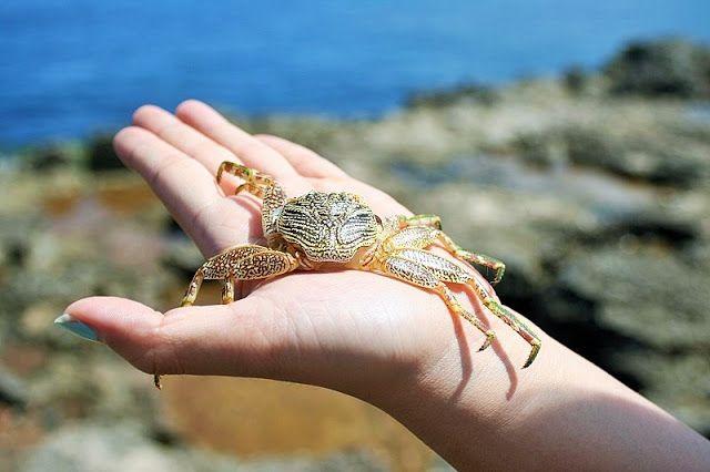 新・バリの素(もと): レンボンガン島&チュニガン島、新ツアーへ初めの一歩