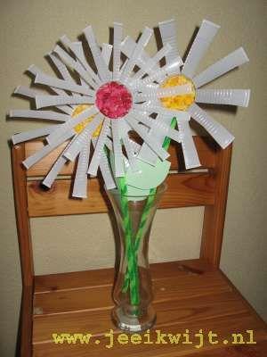 Lente knutsel: In de lente beginnen de bloemetjes weer te bloeien. Allemaal mooie kleurtjes komen tevoorschijn.  Je kunt zelf al een beetje de lente in huis halen, door deze margrieten zelf te knutselen en in een vaasje te zetten.  Je kunt ze natuurlijk ook voor een verjaardag, moederdagof een leidster-of leerkrachtendag maken.  Knip de weggooi bekertjes in tot ongeveer 1 cm aan de bodem. Je kunt allemaal smalle strookjes inknippen, maar wat breder kan natuurlijk ook.  Vouw de...