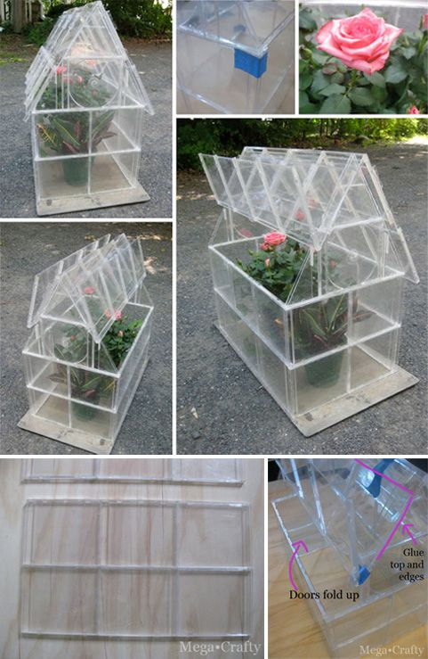 Greenhouse with CDs boxes // Pequeño invernadero con cajas de CD