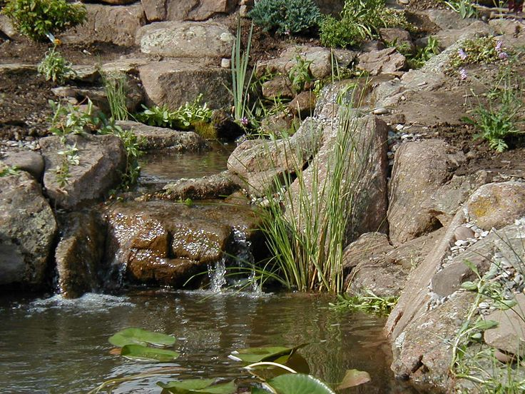 Beautiful waterfall cascading over colorado moss rock into for Garden pond ecosystem