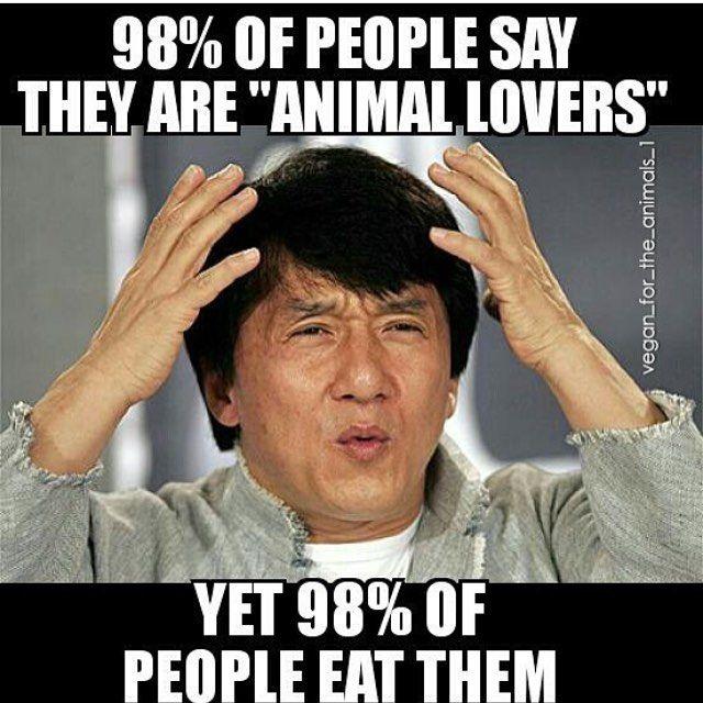 Funny Memes For Vegans : Best go vegan images on pinterest humor