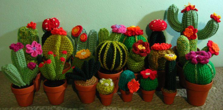 Cactus Fantasia Amigurumi Tejidos A Crochet : mi coleccion completa de cactus tejidos crochet ...