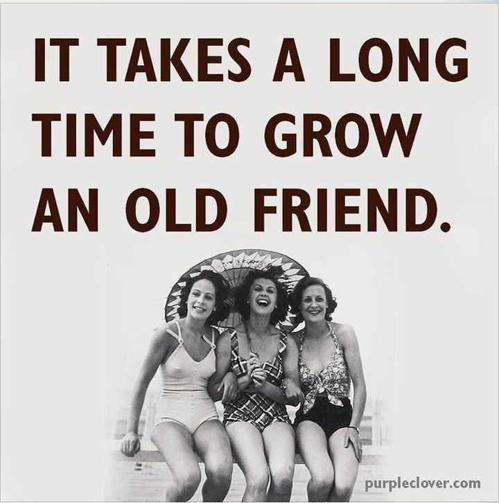 It Takes A Long Time To Grow An Old Friend Old Friend Quotes Friends Quotes Funny Friends Quotes