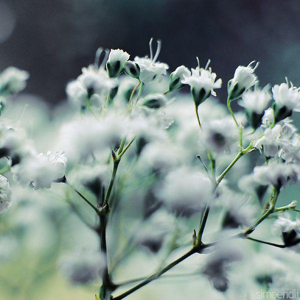 breath. by simoendli on DeviantArt