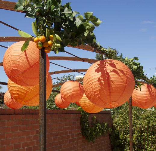 Lanterns & cumquats for the pool arbour, country style