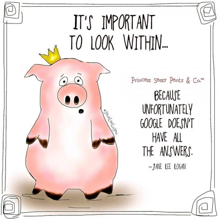 279 Best Images About When Pigs Fly On Pinterest