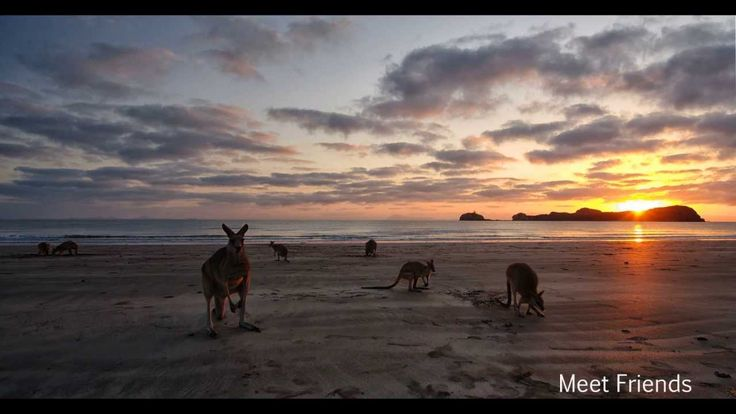 Cape Hillsborough Nature Resort Presented by Peter Bellingham Photography