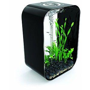(6) Fancy - Reef One biOrb Life Aquarium 60 Liter - Zwart - Reef One gadgets, kado's en originele cadeau