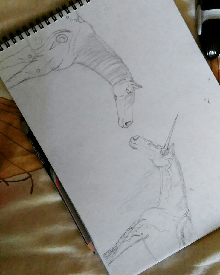 I strated draw some horses.