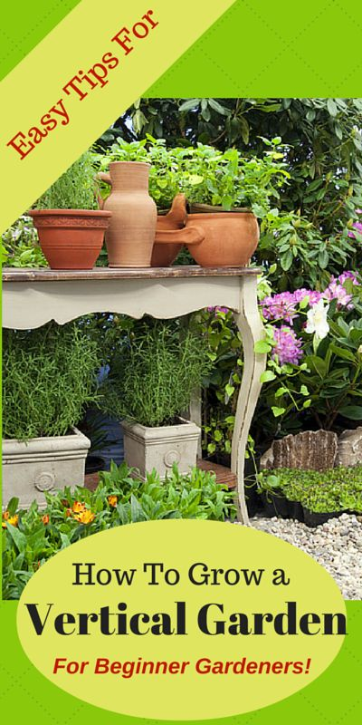 Vertical vegetable gardening is a great way to garden in small sunny spaces! Be creative, and use decorative items such as old tables, chairs, shelves, or hanging baskets to add space and interest to your garden. Pots of flowers will also add beauty to your vegetable garden.