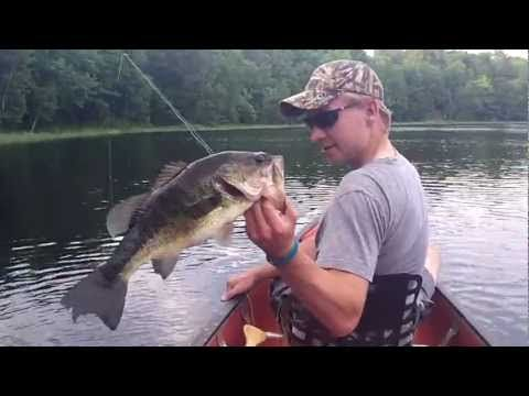 How to catch a bass while fly fishing youtube fishing for Youtube bass fishing