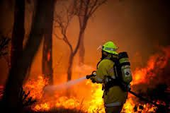 Special Emergency Services (SES) workers are noble volunteers who risk their lives to put out bushfires around Australia. They put their lives at risk so that others can remain safe.