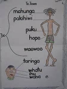 maori language week - Bing Images