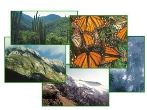 Areas naturales protegidas - Ecoportal.net