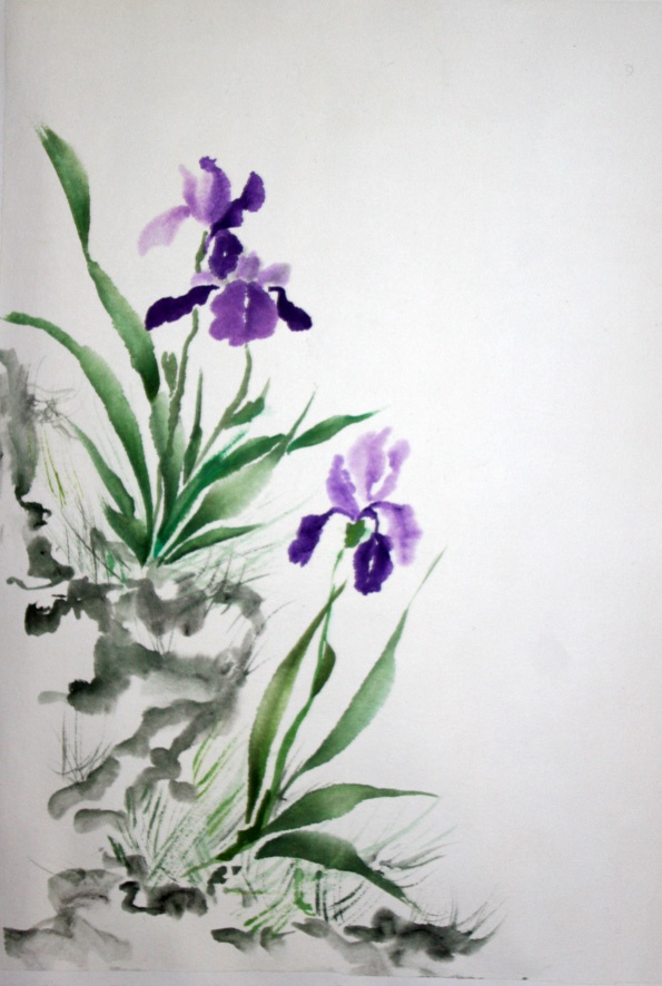 17 Best images about Iris on Pinterest | Watercolour, Iris ...