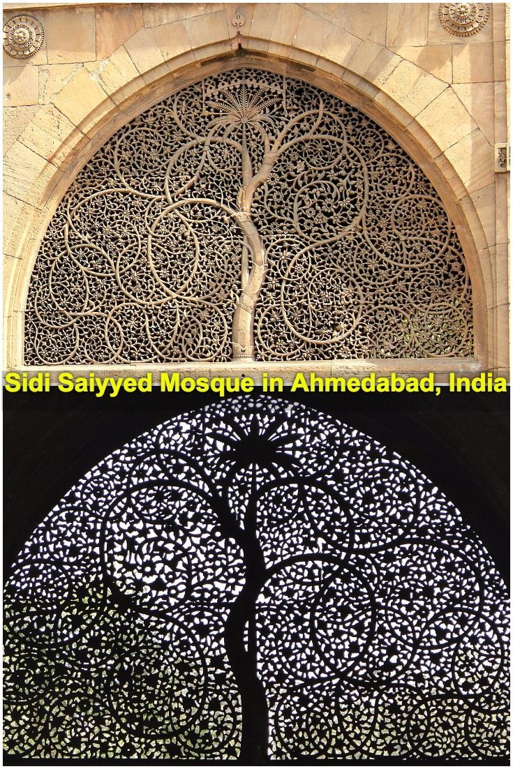 Sidi Saiyyed Mosque in Ahmedabad, India | Sidi Saiyyed Jaali in Ahmedabad, India | Sidi Saiyyed Ni Jaali | Why did IIM-Ahmedabad get inspired from the Sidi Saiyyed Jali | Sidi Saiyad Jali history | The famous Sidi Saiyyed Jaali in Ahmedabad | Gujarat | Must see places in Ahmedabad | Things to do in Ahmedabad | Places to visit in Ahmedabad | IIM Ahmedabad logo | Sidi Saiyad ki Jali | #travel #Ahmedabad #Gujarat #IncredibleIndia #IIMAhmedabad