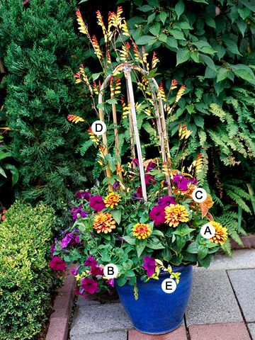 15 Top Butterfly Container Garden Ideas    Bring butterflies to your garden -- even if you have just a deck or patio -- with these easy container recipes.
