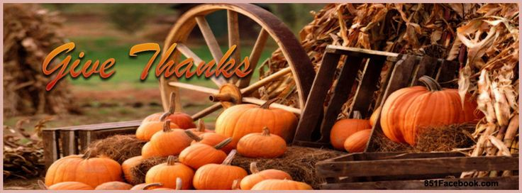 Pumpkin patch festive for thanksgiving. Very rustic timeline cover for your facebook timeline profile.