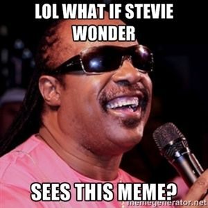 lol what if stevie wonder sees this meme? | stevie wonder