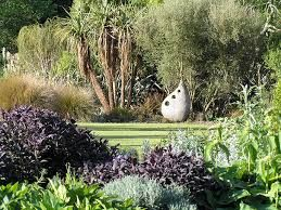 Image result for nz native garden landscaping
