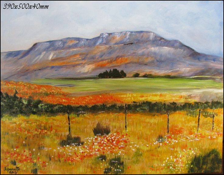 Namaqualand in full bloom Cederberg Oil Painting Stretched Canvas 390x500x40mm  (johanettevandeventer@gmail.com) (MY page where you can see all my paintings for sale:https://www.facebook.com/pages/Art-of-being-feminine/216215068495275?ref=hl https://www.facebook.com/media/set/?set=a.462889420494504.1073741855.216215068495275&type=3)