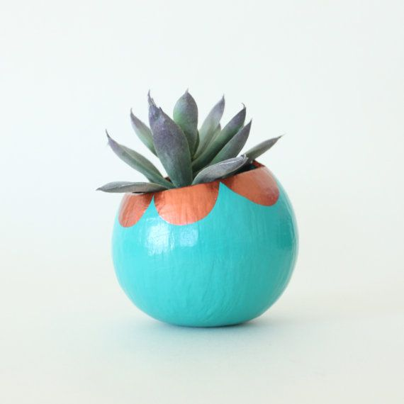 Air Plant Planter with Air Plant - Teal with Copper Scallops | ThriftedandMade