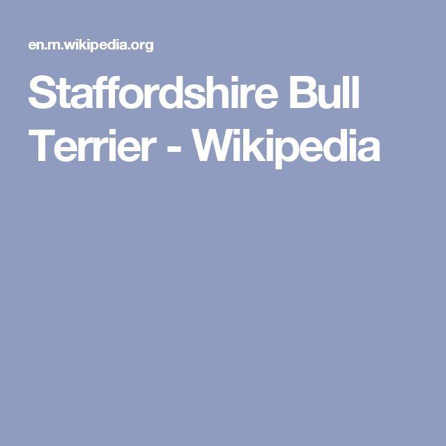 Staffordshire Bull Terrier - Wikipedia