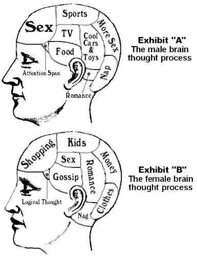 Difference Between Men and Man | Blogs - Cowboy Humor - Differences between the male and female brain ...