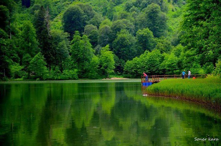Burası Artvin, Borçka-Karagöl. Buraya tatile gelin, Cennet gibi yer burası 🍀🌱🍃🌴🌷💚