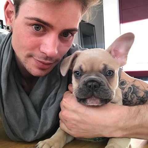 #home #düsseldorf #gerresheim #stitch #bluefawn #frenchbulldog #frenchbully #frenchy #bully #blueeyes #plugs #tattoo #einohrhase #einohrbully #oneearup #instagood #instamood #instaguy #instagay #piercing #happy #cute #little #dog #babyboy #monster