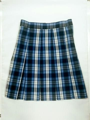 592d9d2eeacb89 Pleated Skirt: Plaid 76 | Plaid School Uniforms | Pleated skirt, Box ...