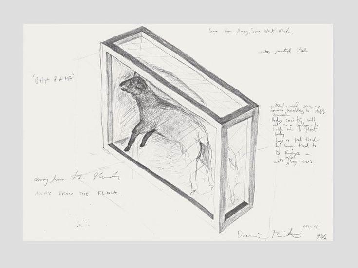 Damien Hirst  Away from the Flock  1994  Pencil on paper  500 x 730 mm | 19.7 x 28.7 in