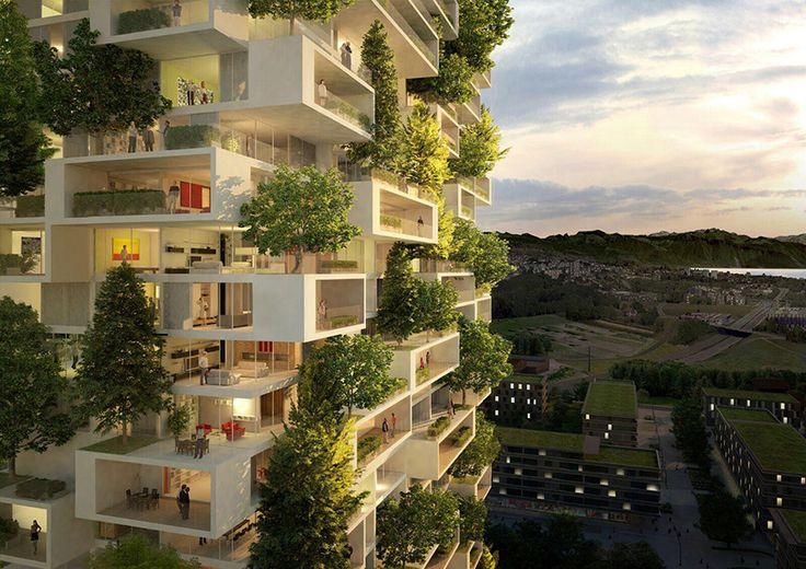 La Tour des Cèdres un immeuble végétalisé avec des arbres 2Tout2Rien