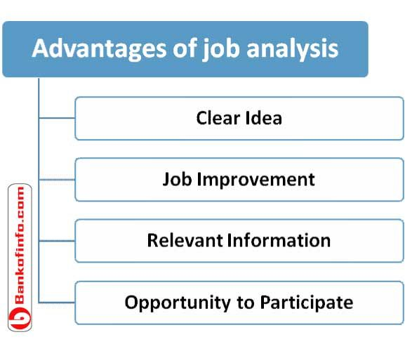 benefits of job analysis business essay Compensation & benefits  consider the changing job market and demographics of the personnel pool,  haven't found the essay you want.