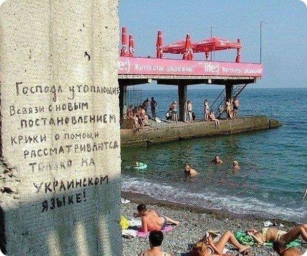 юмор фото: 25 тыс изображений найдено в Яндекс.Картинках