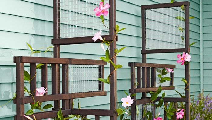 Freestanding Trellis Brought To You By Lowes Creative