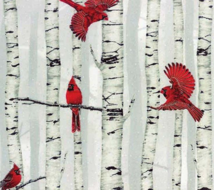 Cotton Woodsy Winter Cardinals Red Birds Birch Trees