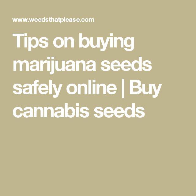 Tips on buying marijuana seeds safely online   Buy cannabis seeds