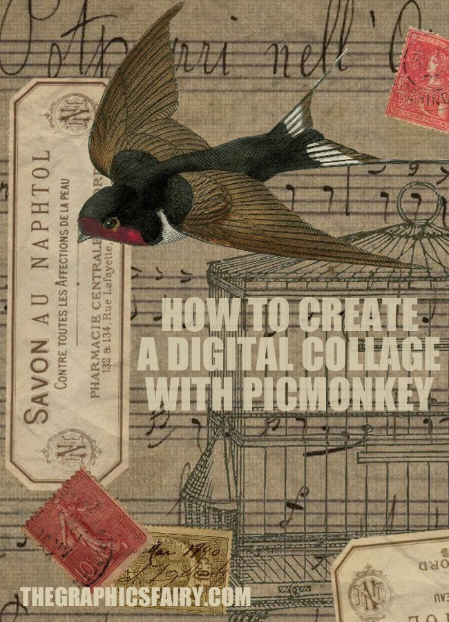 How To Create A Digital Collage With PicMonkey